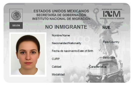 formato migratorio fm1